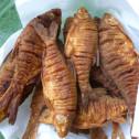 Fried breem fish - sult keszeg